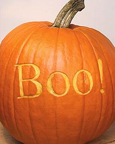 Tvm1033_102505_boopumpkin_l